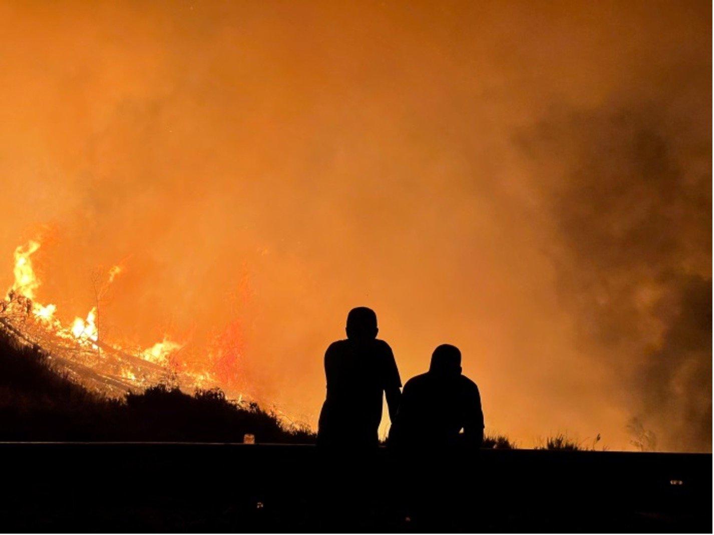 Incendie de forêt - catastrophe naturelle