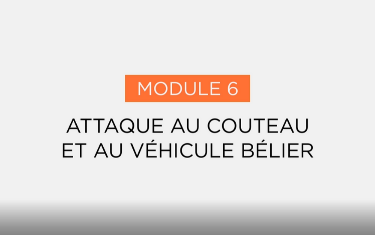 6-attaque-couteau-vehicule-belier-smart-citizen-elearning-iremos